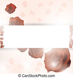 Red petals on a white background. Abstract frame with place for text