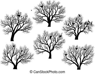 Silhouettes of birds nest in trees. - Set of vector...