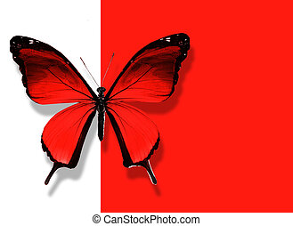 Red butterfly flying on white red background