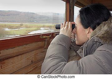 birdwatching, a woman with binoculars looking through window...