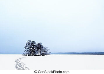 Small island in winter - Small island with bare trees in...