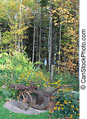 Antique Plow and Black-eyed Susans - An old plow in a garden...