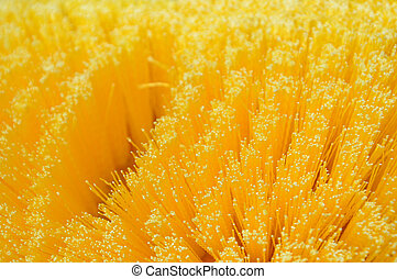 bristle brush detail - detailed texture of yellow bristle...