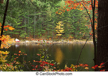 Quiet lake shore setting - rowboat on the shore of a quiet...