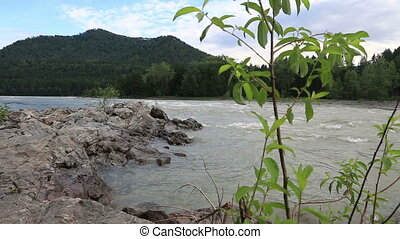Rapid for the Katun River. Altai Krai. Russia.