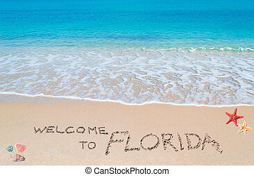 welcome to florida - turquoise water and golden sand with...