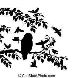 Birds mobbing owl - Editable vector silhouettes of songbirds...
