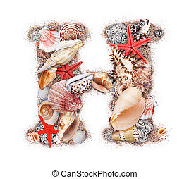 Letter H made of seashell isolated on white background