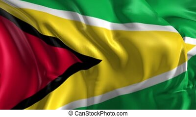 Flag of Guyana - Beautiful 3d animation of Guyana flag in...