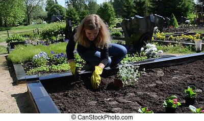 father grave plant flower - Woman girl daughter sit plants...
