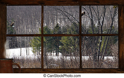 Cabin view in winter. - Winter landscape with eagles, as...