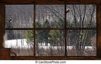 cabaña, vista, invierno