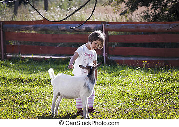 Talking to goat - Little girl (3 years old) stroking and...
