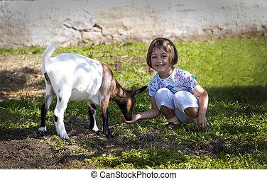 Feeding goat 7 - Little girl (3 years old) feeding goat on...
