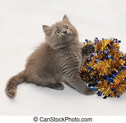 Gray fluffy kitten sitting looking up with Christmas garland...
