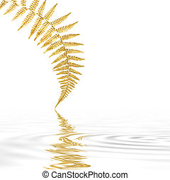 Golden Fern Leaf - Golden fern leaf with reflection in...