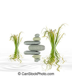 Growth and Balance - Bamboo leaf grass and spa stones in...