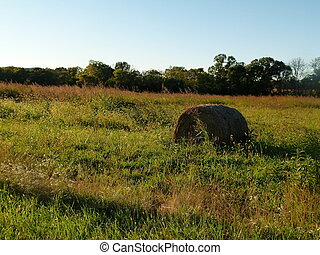 Haybale in Sunset - Haybale during Golden hour in...