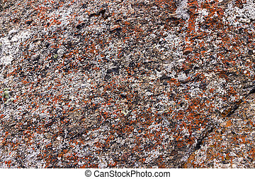 rock formation - detail of a colorful rock formation