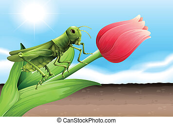A grasshopper and the flower bud - Illustration of a...