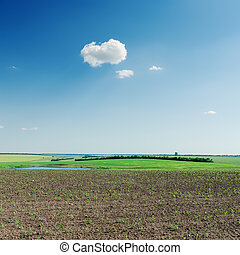 agriculture spring field and cloud in blue sky
