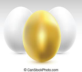 chicken eggs - Illustration of three chicken eggs. Vector.