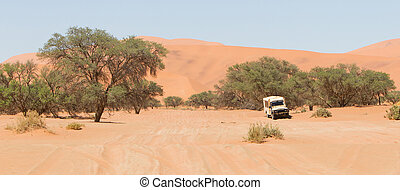 Road in the Sossusvlei, the famous red dunes of Namib...