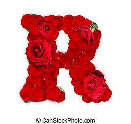 Letter R made from red roses and petals isolated on a white...