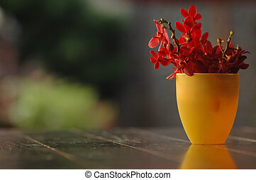 red flowers in yellow vase on a table