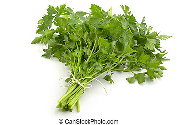 fresh parsley - bunch of fresh parsley isolated on white...