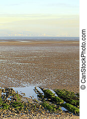 Swansea Bay tidal flats - A view across the tidal flats of...