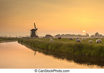 Dutch Polder Landscape during Orange Sunset - Dutch...