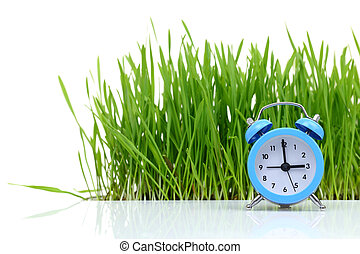 Blue alarm clock with fresh green grass isolated