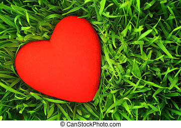 Red heart on green grass background
