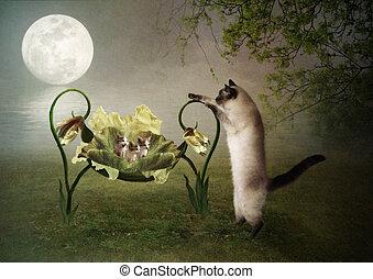 Mama cat lulls kittens - Mama cat lulls her kittens