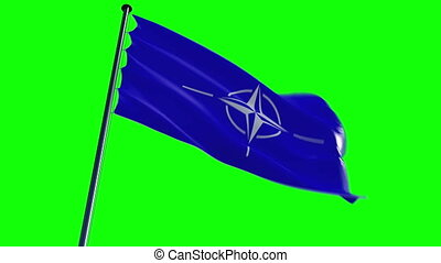 NATO Flag, HQ animated, greenscreen - ready to use animation...