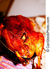 Food, meat, poultry, roast goose