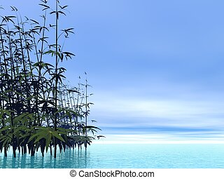 Bamboos - 3D render - Bamboos and water by beautiful blue...