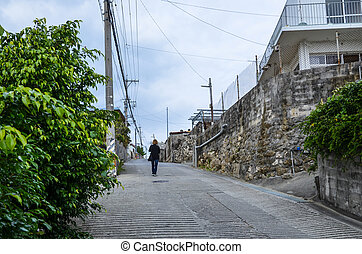 Japanese streetview - Streetview from an okinawan village in...