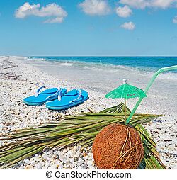 flip flops and coconut - coconut and flip flops under a blue...