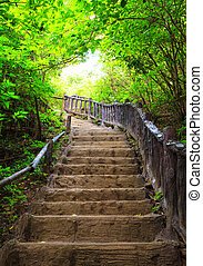Stairway to forest, Erawan national...