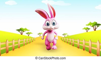 Happy bunny is running - Pink bunny is running