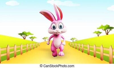 Happy bunny is running - Pink bunny is running