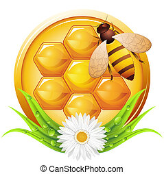 Honey concept with grass and flower. Vector illustration.