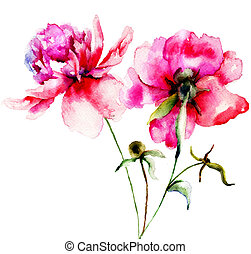 Red Peony flowers, Watercolor painting