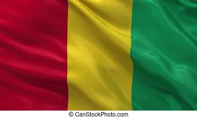 Flag of Guinea seamless loop - Flag of Guinea gently waving...
