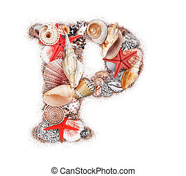 Letter P made of seashell isolated on white background