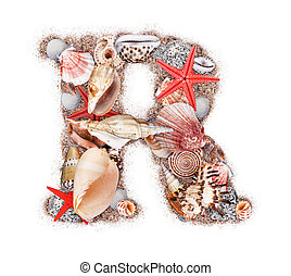 Letter R made of seashell isolated on white background