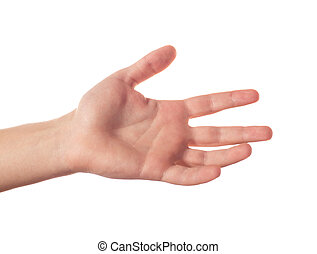 One human hand with five fingers