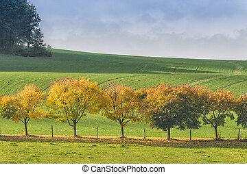 Saxon Switzerland autumn landscape - Landscape of Saxon...